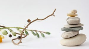 Branches and Stones